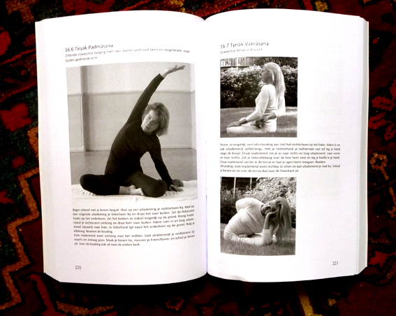 Yogaboek YOGA Beginnen en doorgaan 25 opeenvolgende yogalessen 600 fotos 450 blz Euro 22.95 Schrijfster Lydwina Meerman_a