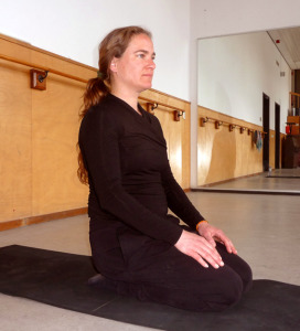 Yoga Opleiding De Cobra Amsterdam_Lydwina Meerman_Opleiding tot Yogadocent met individuele leerweg_Verdieping in een yogahouding met fotos _Diamanthouding_