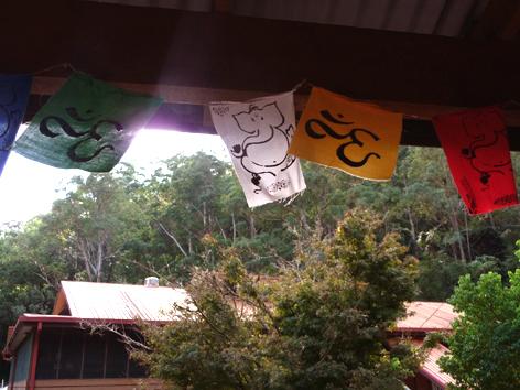 Lydwina Meerman _ Yoga Opleiding De Cobra Amsterdam _ Satyananda Yoga Ashram Mangrove Creek NSW Australia _ Mei 2011 _ 4