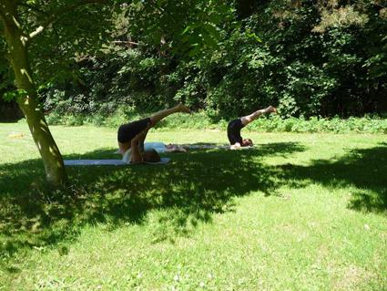Yoga in de schaduw van een grote boom
