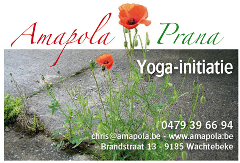 Yogacentrum Amapola_Chris Bus_Wachtebeke_Belgie_Yoga Workshop Lydwina Meerman_