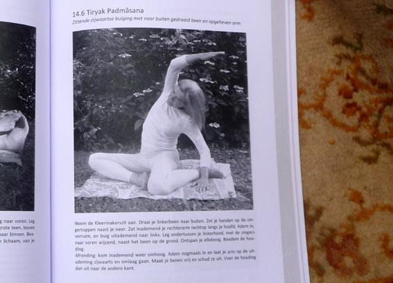 YOGABOEK Yoga Beginnen en doorgaan 25 duidelijke yogalessen Euro 22.95 600 fotos 450 blz Lydwinayoga 11