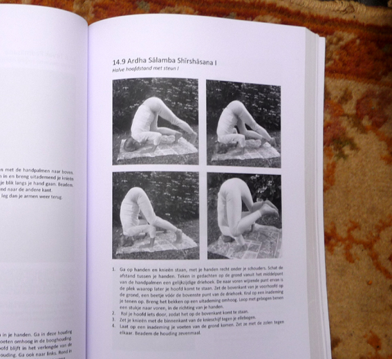 YOGABOEK Yoga Beginnen en doorgaan 25 duidelijke yogalessen Euro 22.95 600 fotos 450 blz Lydwinayoga 12