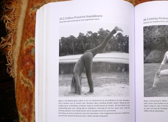 YOGABOEK Yoga Beginnen en doorgaan 25 duidelijke yogalessen Euro 22.95 600 fotos 450 blz Lydwinayoga 14
