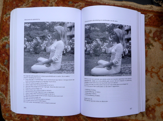 YOGABOEK Yoga Beginnen en doorgaan 25 duidelijke yogalessen Euro 22.95 600 fotos 450 blz Lydwinayoga 15
