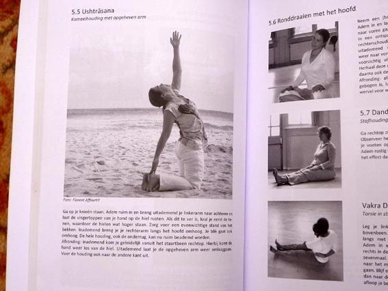 YOGABOEK Yoga Beginnen en doorgaan 25 duidelijke yogalessen Euro 22.95 600 fotos 450 blz Lydwinayoga 7