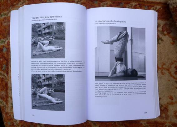 YOGABOEK Yoga Beginnen en doorgaan 25 duidelijke yogalessen Euro 22.95 600 fotos 450 blz Lydwinayoga 8