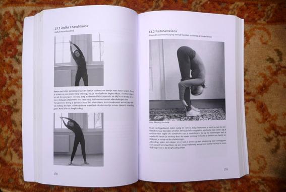 YOGABOEK Yoga Beginnen en doorgaan 25 duidelijke yogalessen Euro 22.95 600 fotos 450 blz Lydwinayoga 9